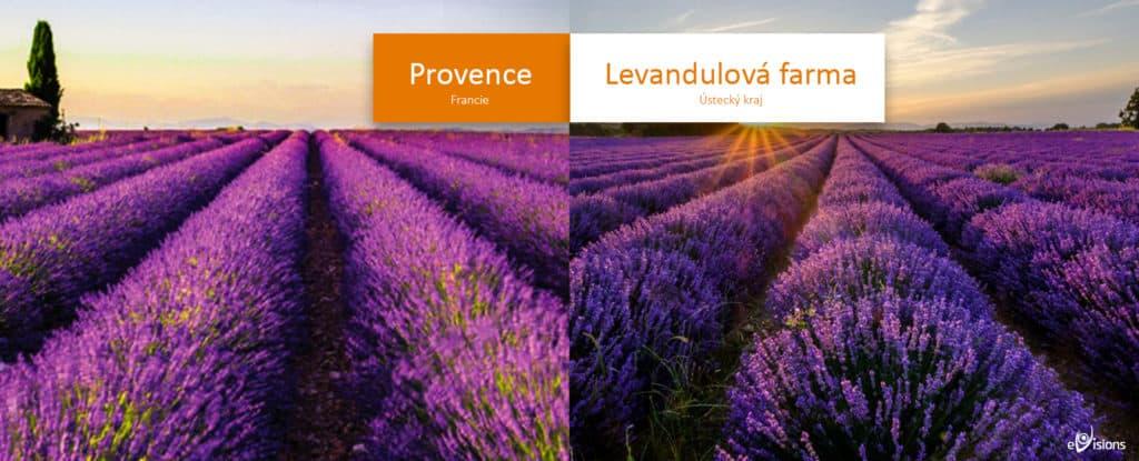 Provence versus Levandulová farma pod Řípem